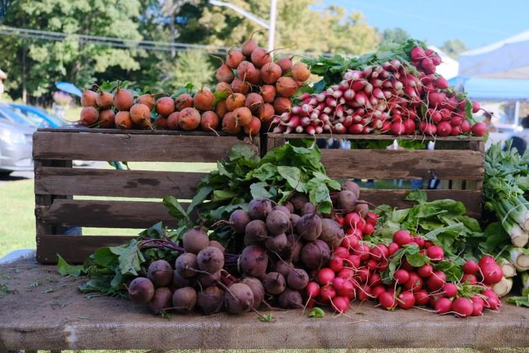 Root vegetables grown in New York