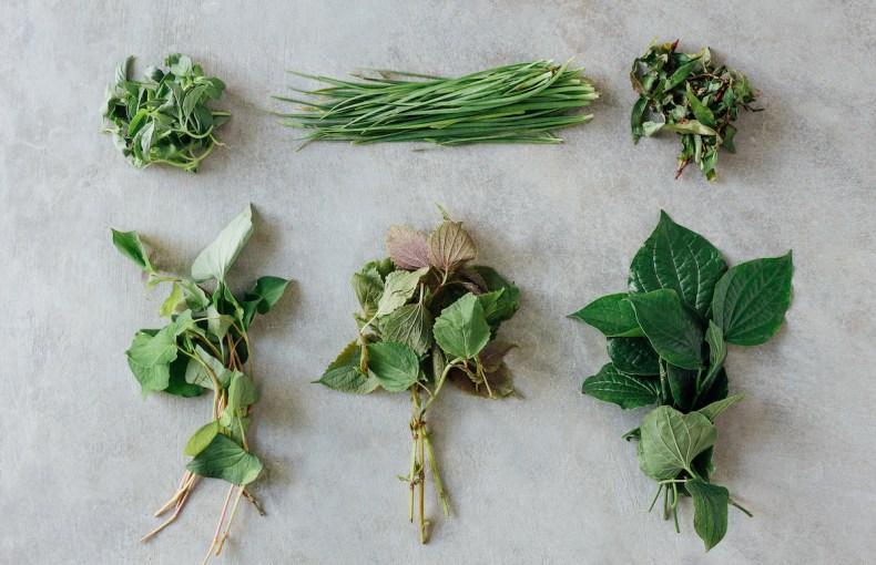 herbs for healing the flu