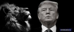 Ainsi rugit le Lion