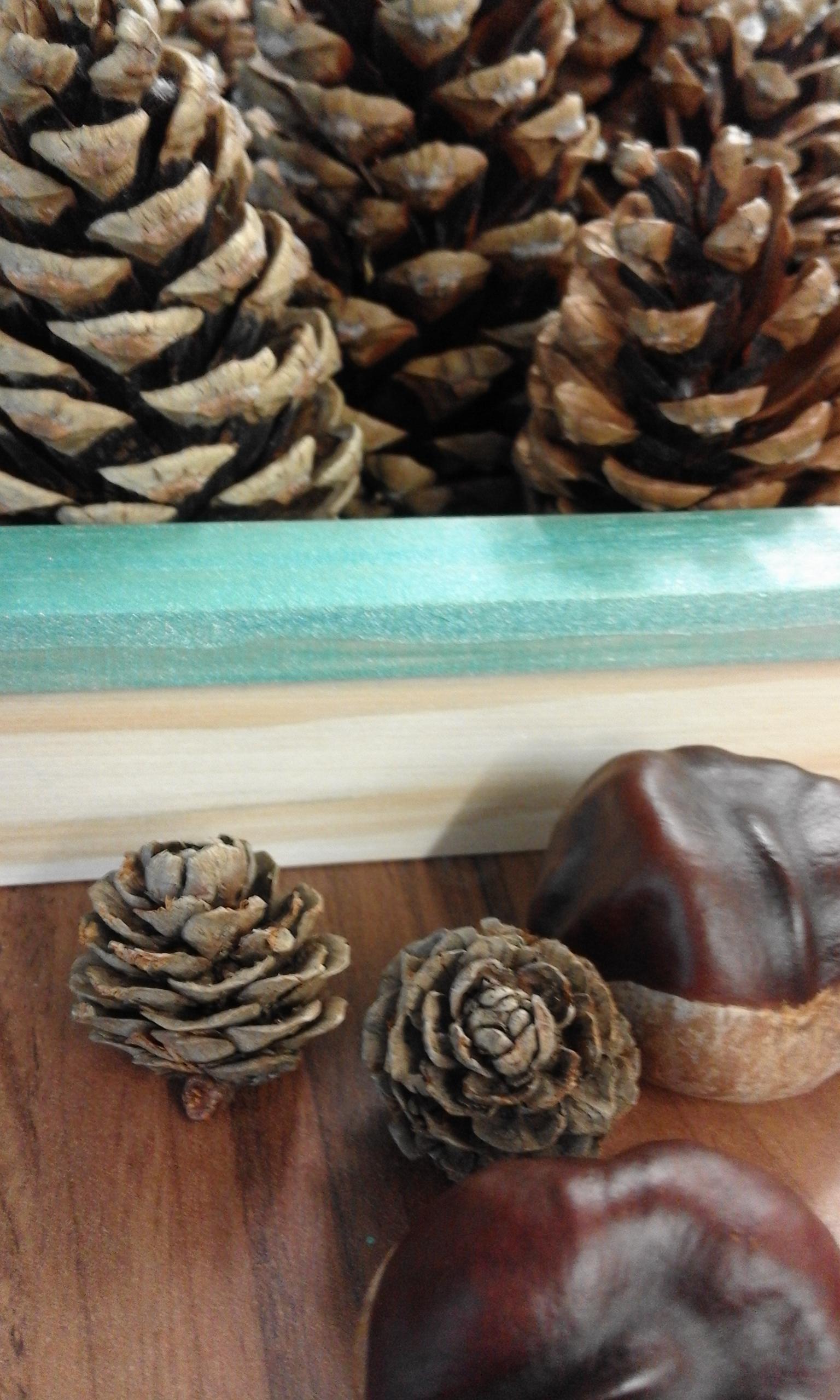 pine cone prayers