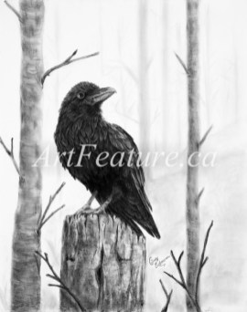 Raven (private collection)