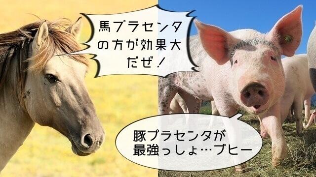 馬プラセンタと豚プラセンタ