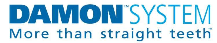 Damon System logo 4c