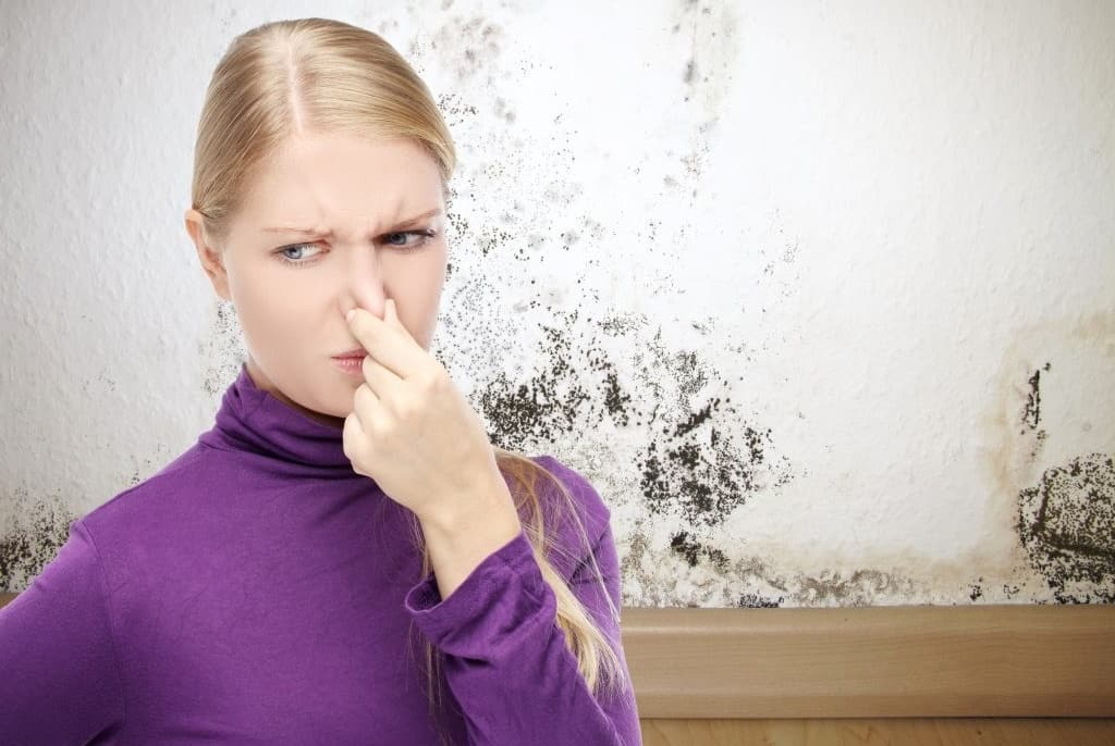 how to get rid of that musty smell