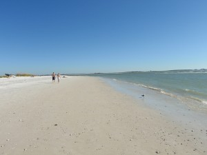 Looking for private beach wedding locationin Dunedin Clearwater FL