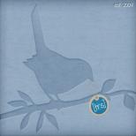 [trs]LOGO_new