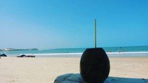 pipa_baia_dos_golfinhos