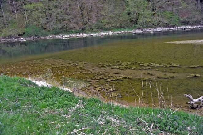 Journée mitigée sur le Doubs