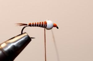 Nymphe a bille fil verni (10)