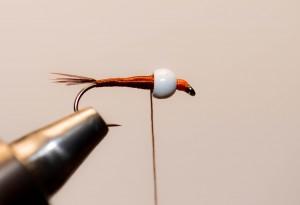 Nymphe a bille fil verni (7)