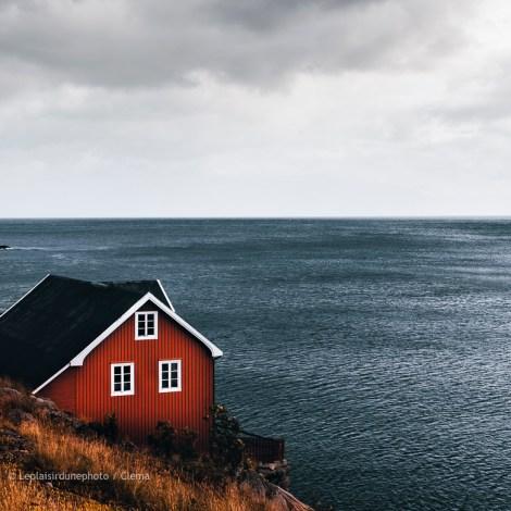 Lofoten Reine Norvège Vantrip