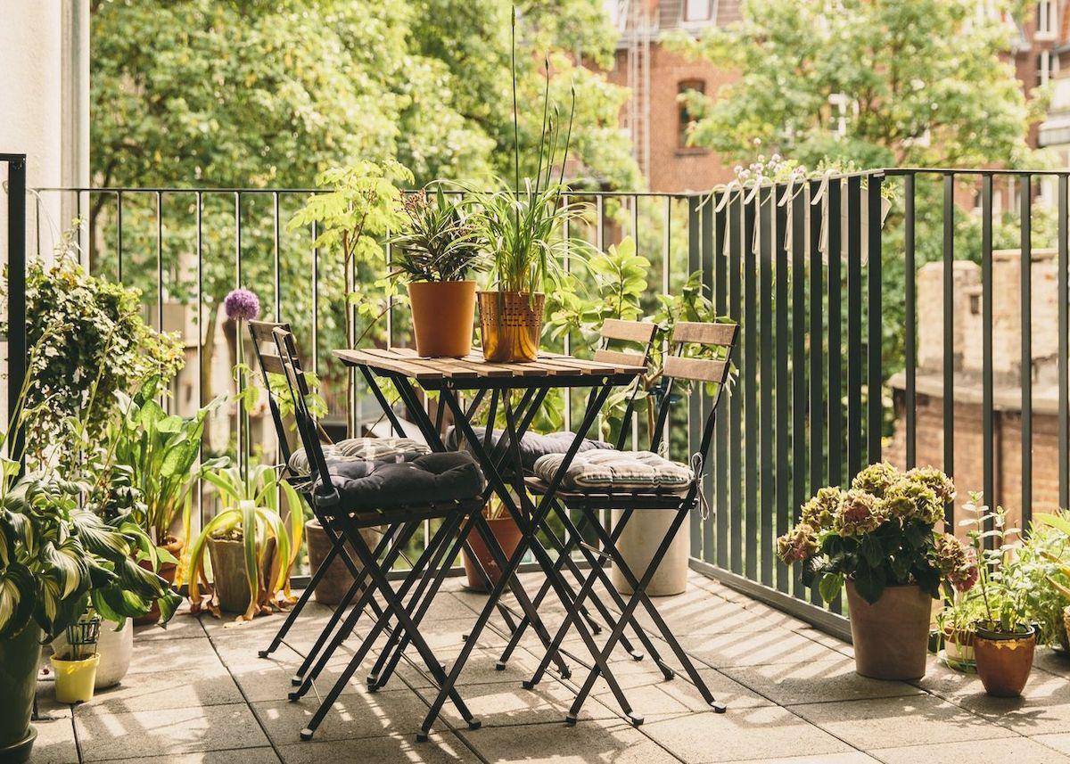 Plante Balcon Ouest 10 Astuces Pour L Embellir Clem