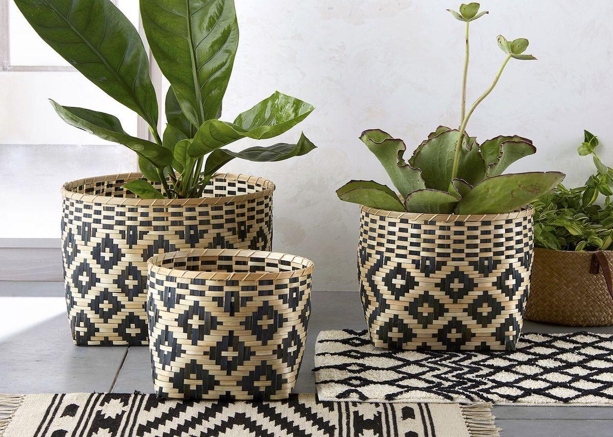 panier de rangement cache pot bicolore noir marron plante verte - blog déco - clem around the corner