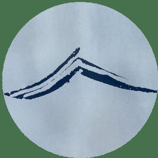 Waves/Birds