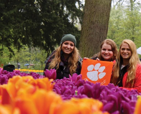 Katie Justice '15, Rebecca Thomas '15* and Ashley Summers '15 share their Tiger pride among the tulips in Amsterdam.