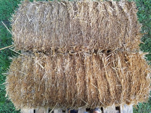Place bale with cut end facing up.
