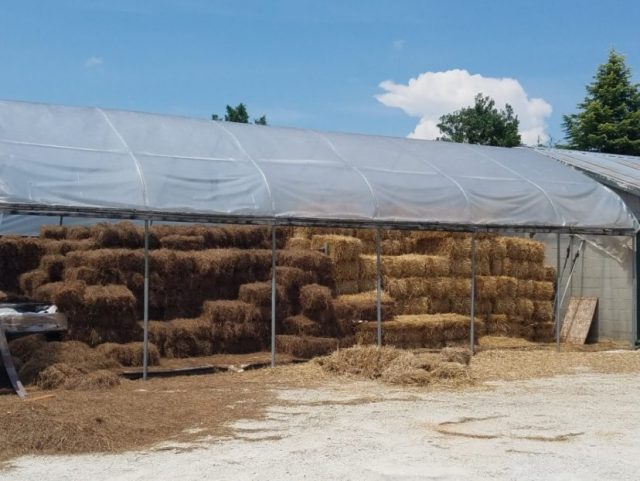 Straw bales (right) are easily purchased from local dealers.