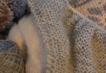 Le temps est venu… joyeux tricot21