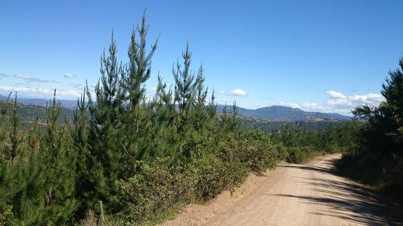Vista hacia el valle de Lolol