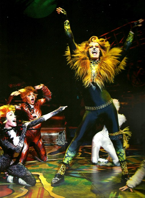 Cats Musical (15)