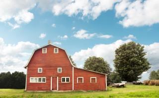 Improving Emotional Health on the Farm