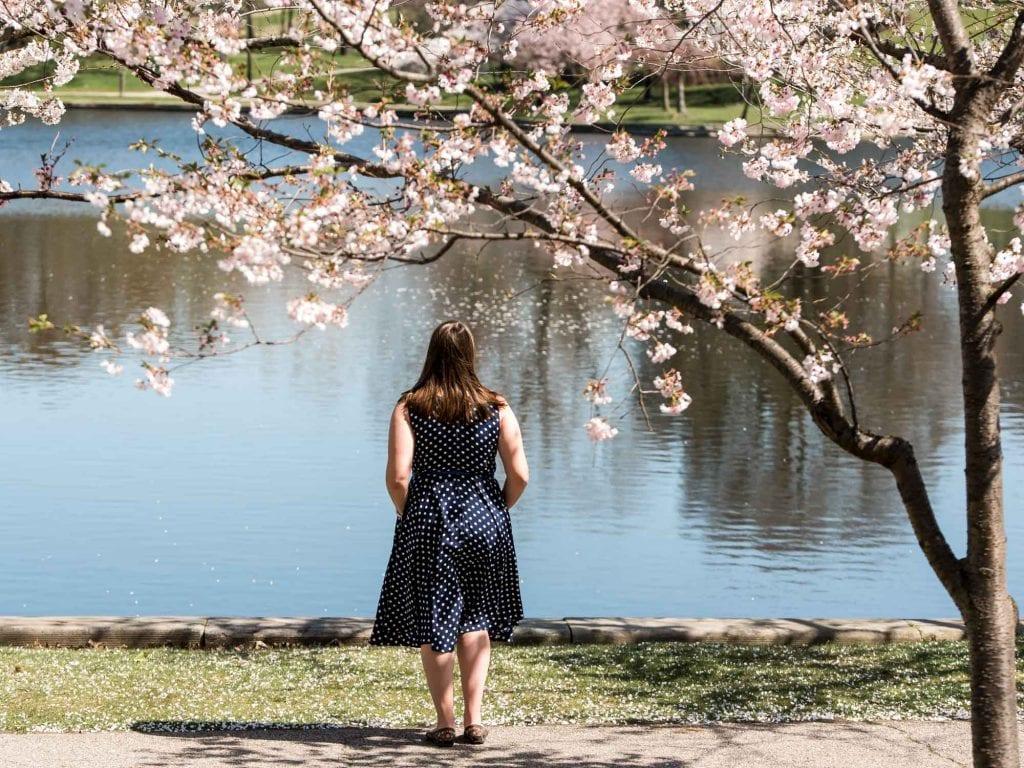 Spring at Wade Lagoon