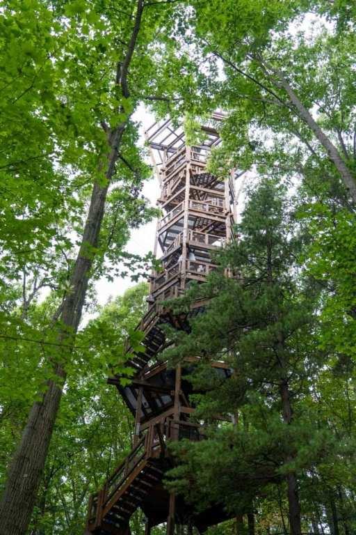 Emergent Tower at Holden Arboretum