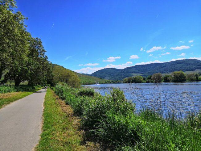 Fast schon am Ziel: Maare-Mosel-Radweg kurz vor Bernkastel-Kues