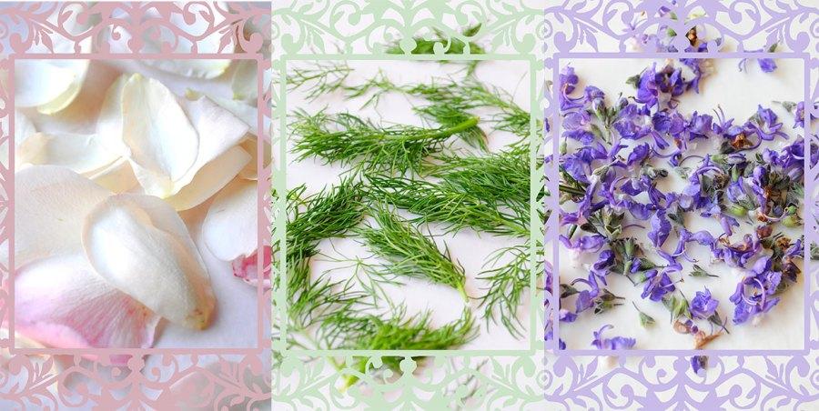 Rose Petals - Fennel - Rosemary Flowers