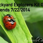 Summer Learning – Backyard Explorers Kit Giveaway