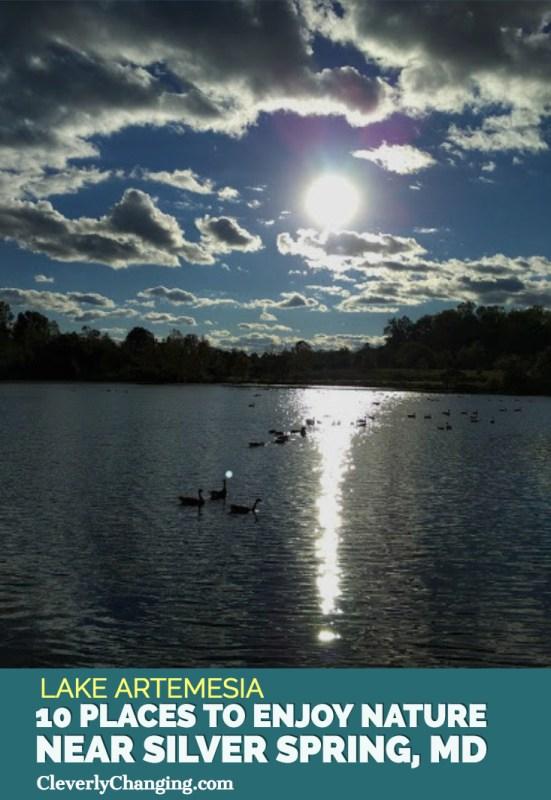 Nature Places to visit - Lake Artemesia