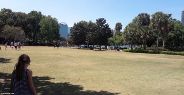 lake_eola_grass