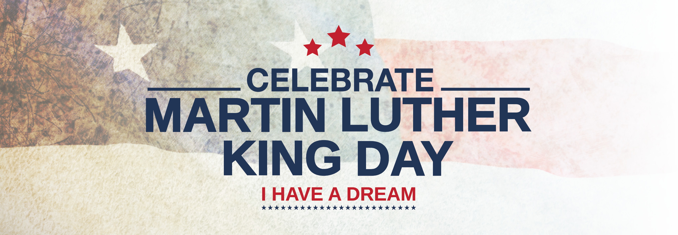 Martin Luther King Jr Day Celebration Book Collection