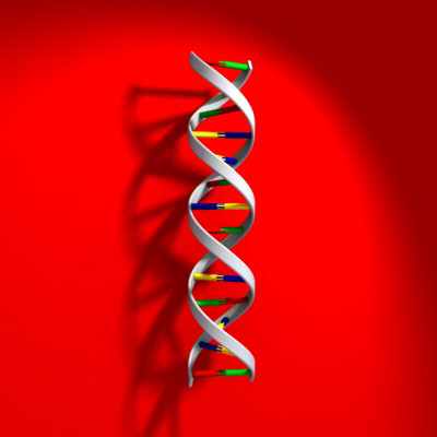 The DNA Chip-YOU on a Smart Card