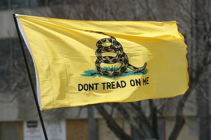 GiN Tea Party Questions: GOP Employee Seems to Protest Too Much