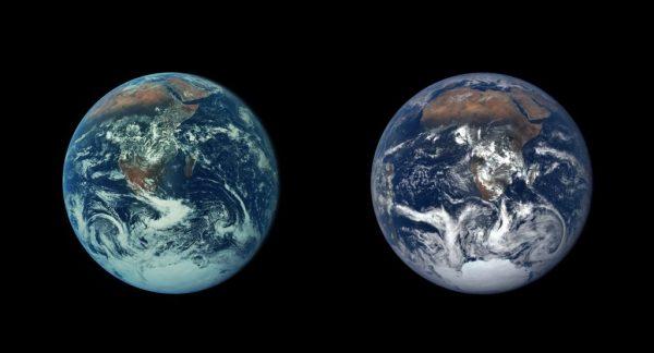 Спортсмены массово верят в теорию плоской Земли. Ее ...
