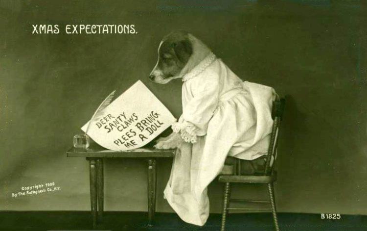 Antique Christmas postcards with dogs - vintage