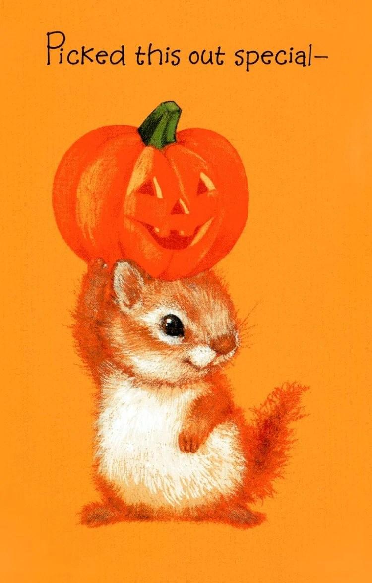 Cute little Hallloween squirrel - vintage card