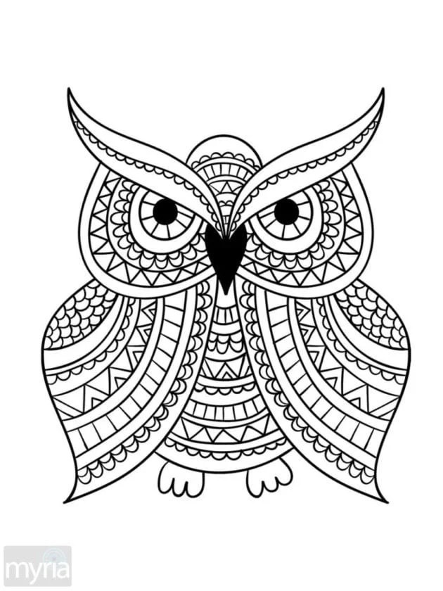 Click Americana S Shop See Cool Fashions Vintage Coloring Books