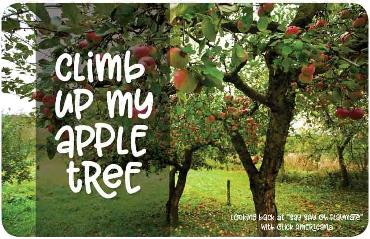 Say Say Oh Playmate - Apple tree - at Click Americana