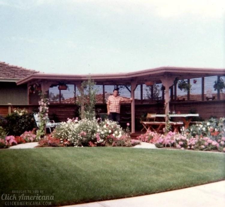 Vintage 1970s house in Santa Rosa California - Backyard (2)