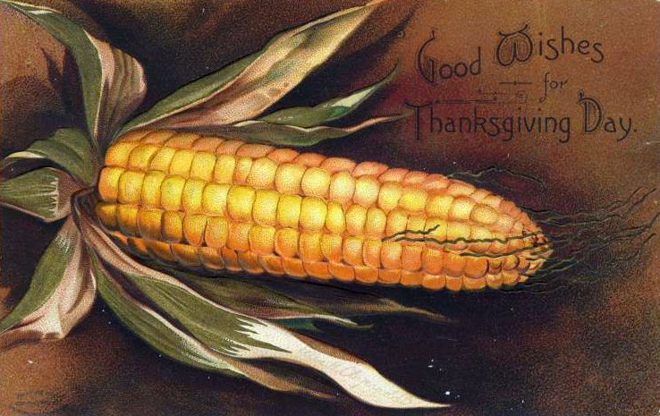 Vintage and antique Thanksgiving postcards from the early 1900s (4)