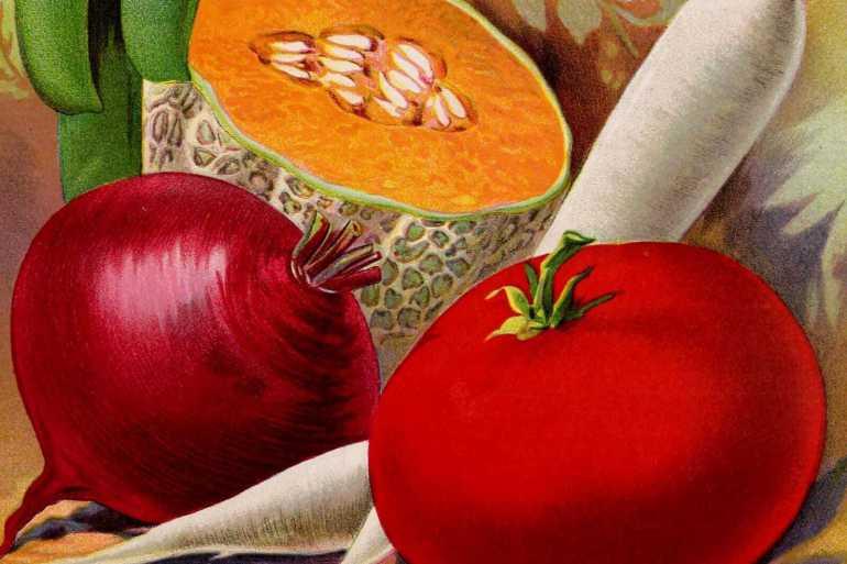 Vintage vegetables and fruits