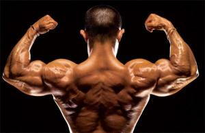 Anavar and Testosterone – Safe and Beneficial