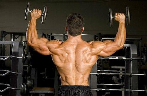 sustanon-muscular-back