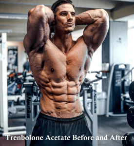 Trenbolone Acetate Before and After
