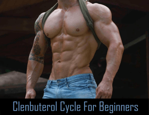 Read more about the article Clenbuterol Cycle For Beginners