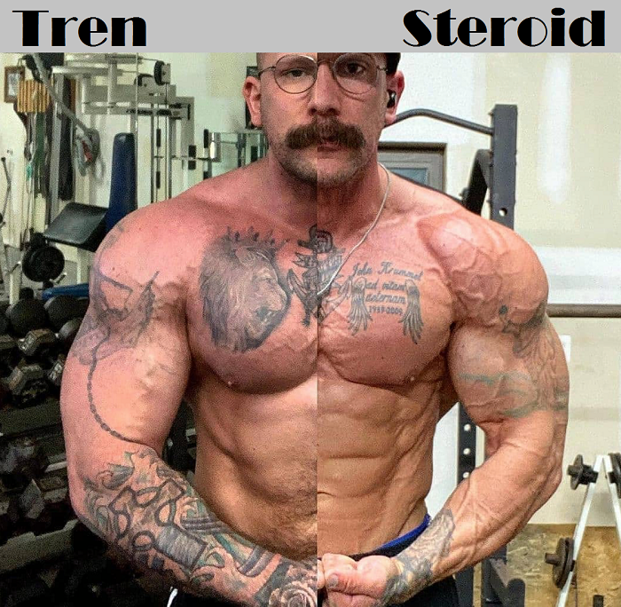 You are currently viewing Tren Steroid