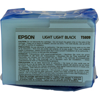 Epson T5809 Ink Cartridge Light Black C13T580900-0
