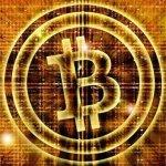 Đầu tư Bitcoin, kẻ đổi đời, nhưng không ít người táng gia bại sản